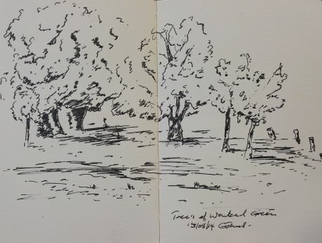 Trees of Wanstead Green